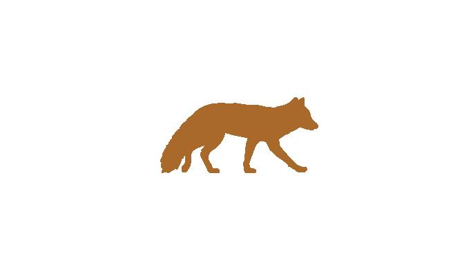 fox-01 2.png