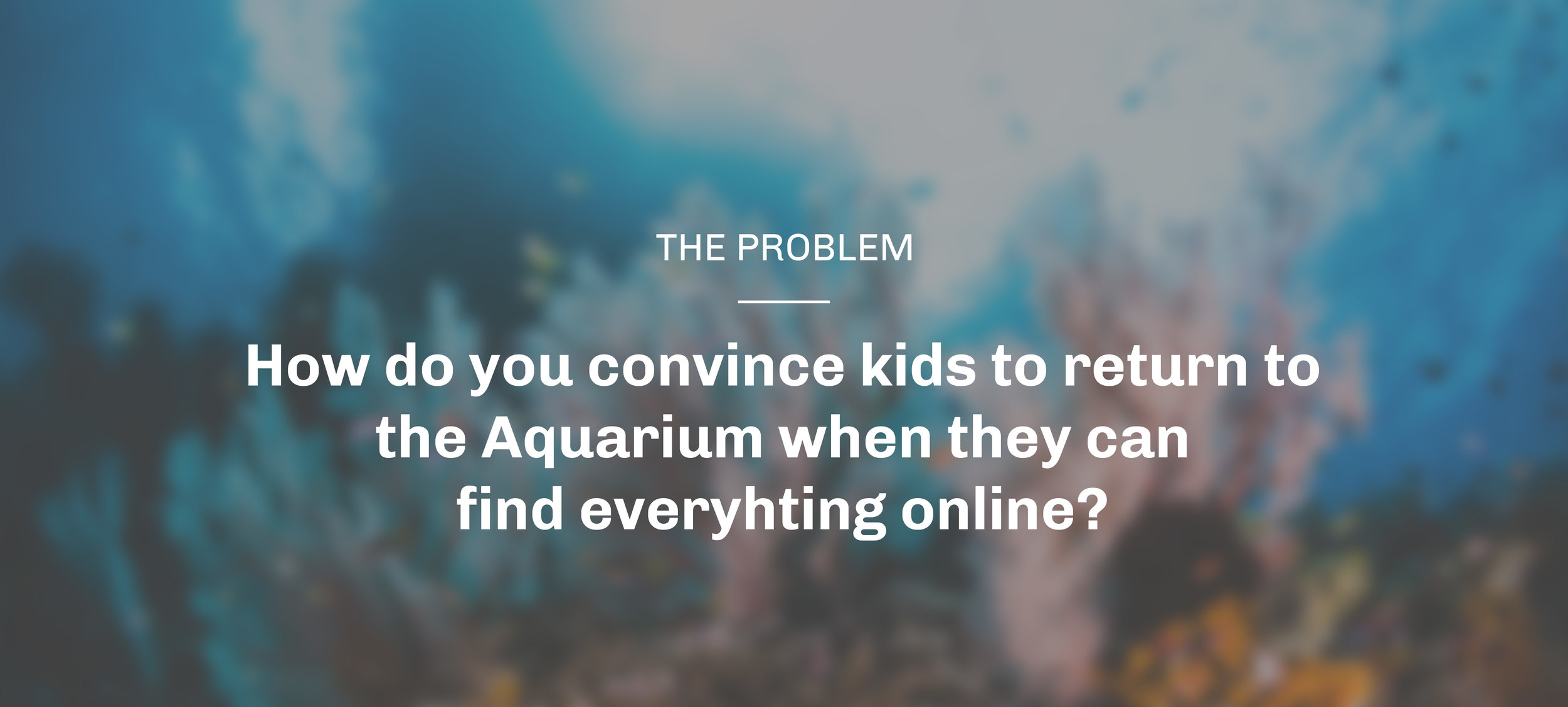 aquarium_question_top.jpg
