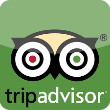 TripAdvisor Widget.png