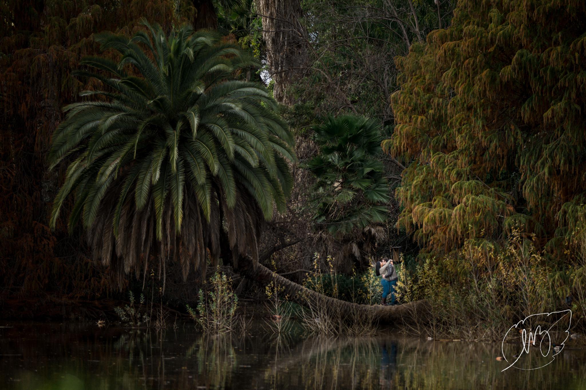 Los_Angeles_Arboretum_Engagement_Photographer_01.jpg