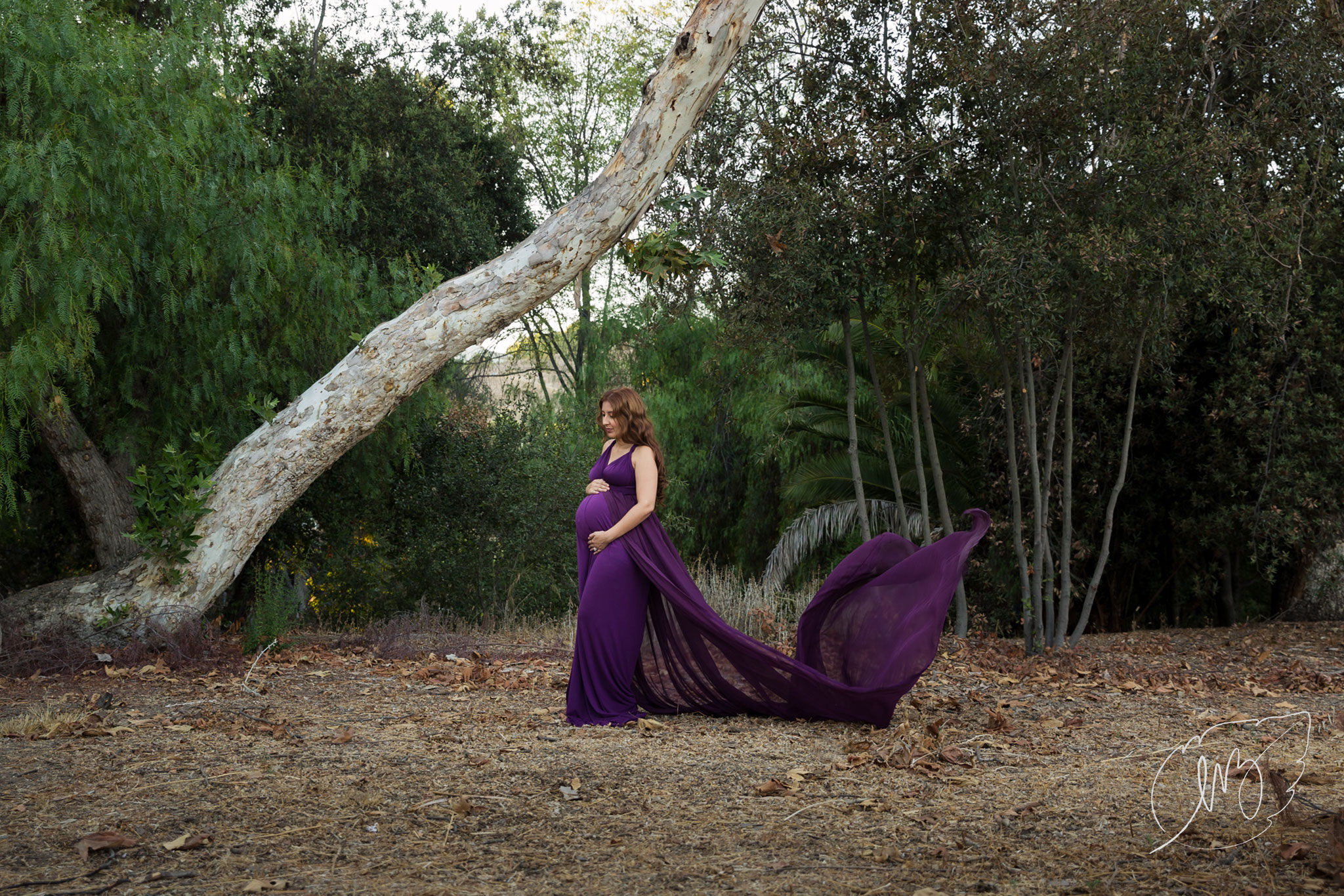 Inland_Empire_Maternity_Photographer_01.jpg