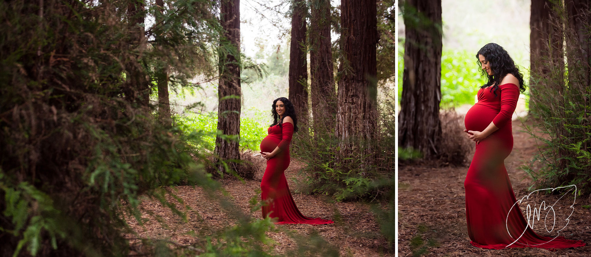 California_Inland_Empire_Maternity_Photographer_04.jpg