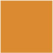 175x175-R-Logo.png