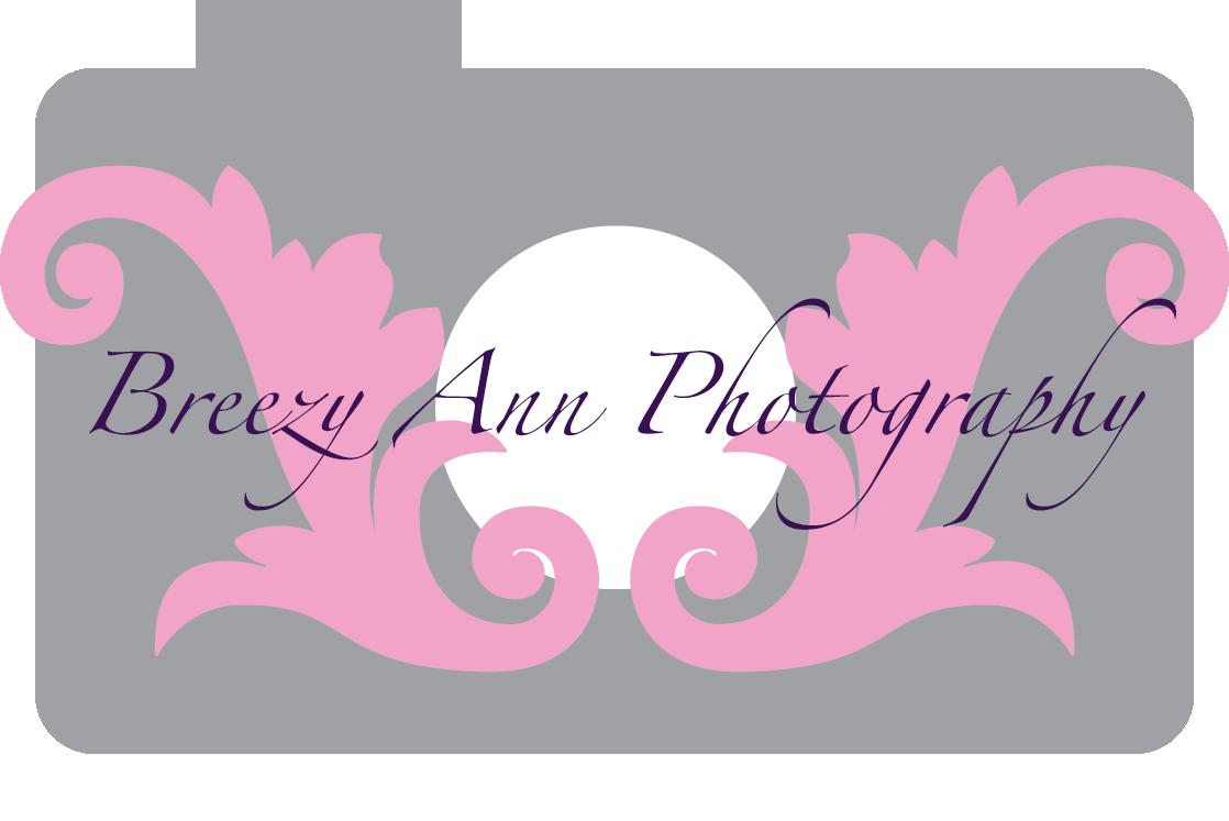 Breezy-Ann-logo-copy.png