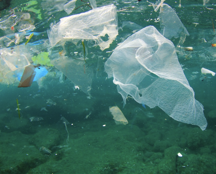 80% of plastic in our ocean comes from land