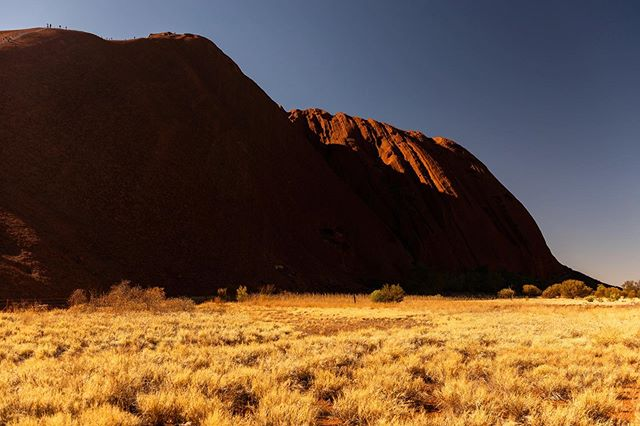 Can you find the hikers going up Uluru? •••••••• Before I visited this massive sandstone formation right in the middle of The Australian Outback I could not have imagine the fabulous cultural background •••• This rock is a birthplace for life. Being a source of shadow, water  and food, it was a gathering centre for human beings and animals alike for thousands of years. •••• When the rare but intense rain falls you can have massive springs and water holes forming and at times, even flooding •••• It's only 530 million years old 🦘😳 . . . . #uluru #australia #outback #roadtrip #travelsoul #redcentre #katatjuta #geology #natgeo #bbctravel #natgeoyourshot #sunrise #wAnderluster #travelblogging #nikond610 #explore #noplanetb #smithsonianmagazine #picoftheday