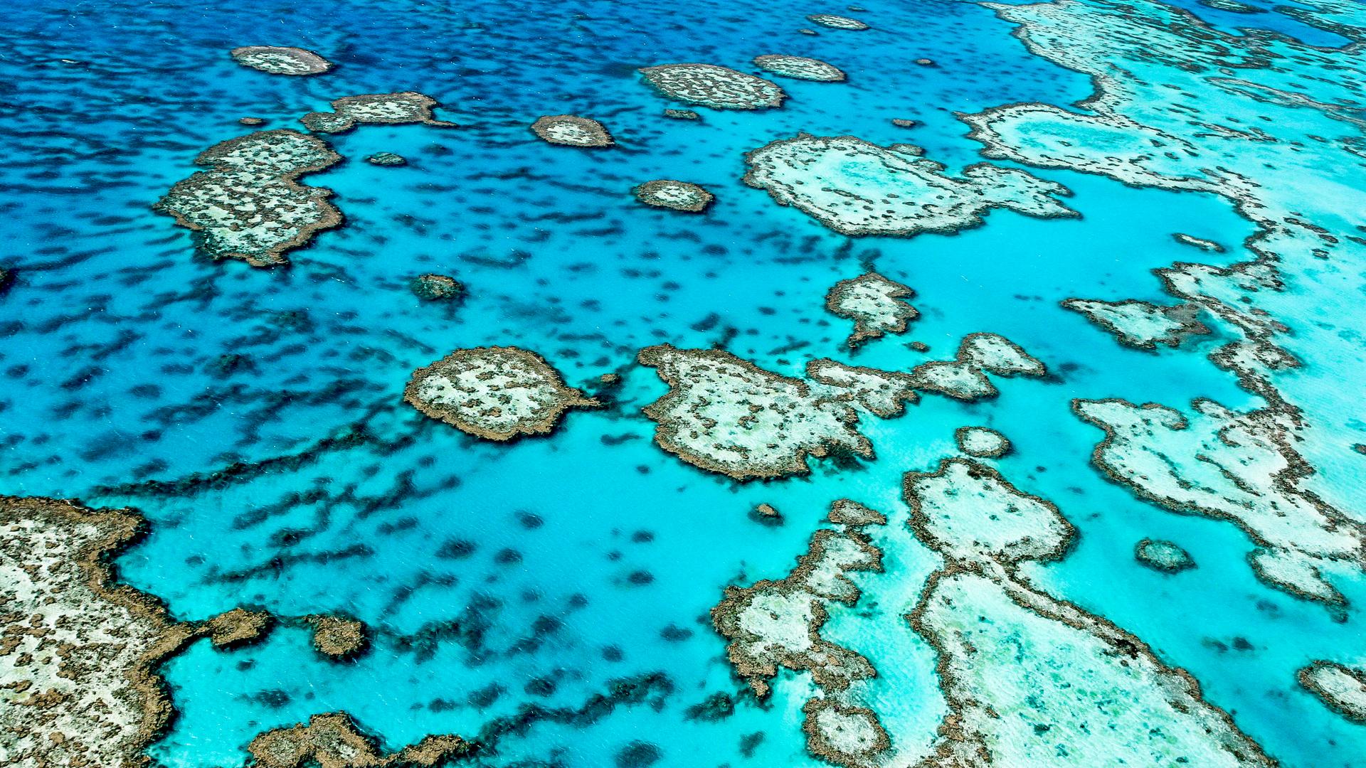 SuperTrip: Australia & New Zealand