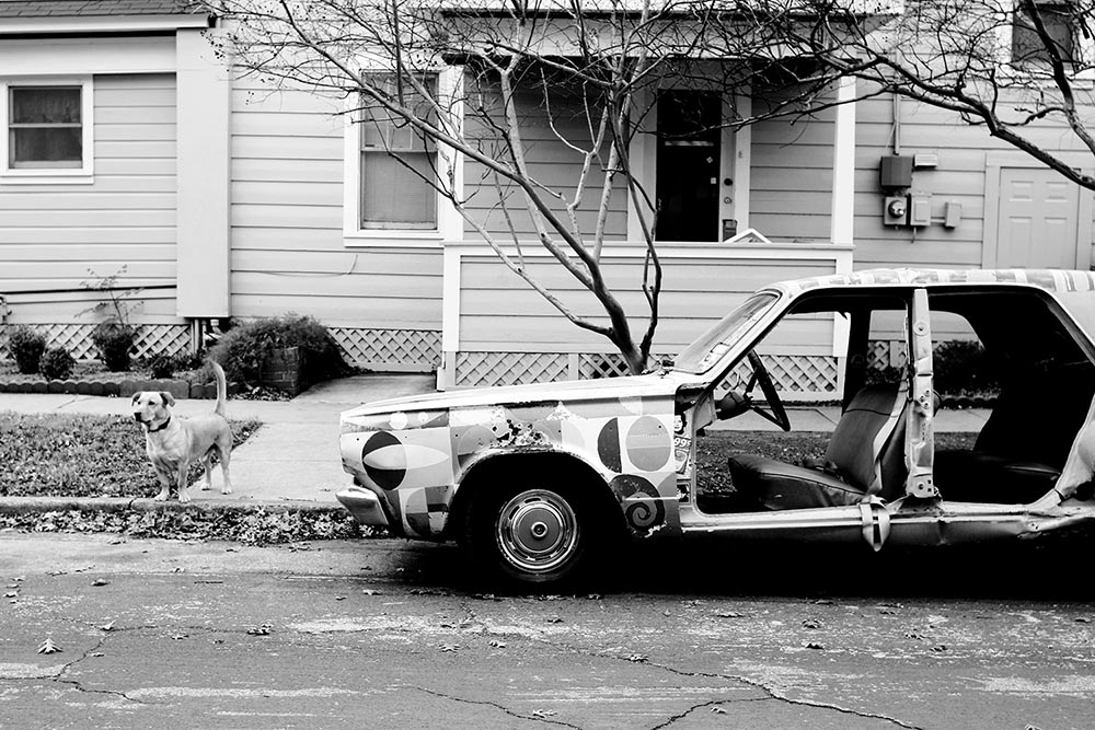Black and white photograph of an old car with no doors and a stray dog standing at attention.
