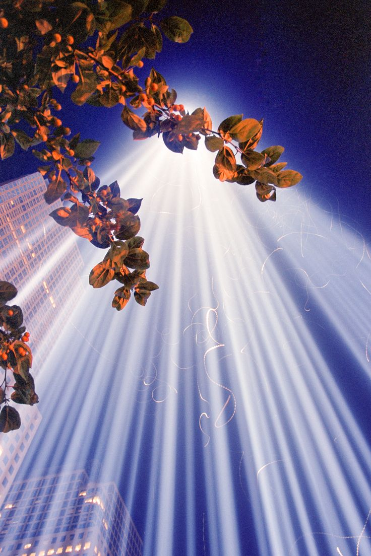 The Tribute in Lights at the former site of the World Trade Center in New York City, photographed on Fuji Superia Reala film. The swirling white lines are birds and insects attracted to the light.