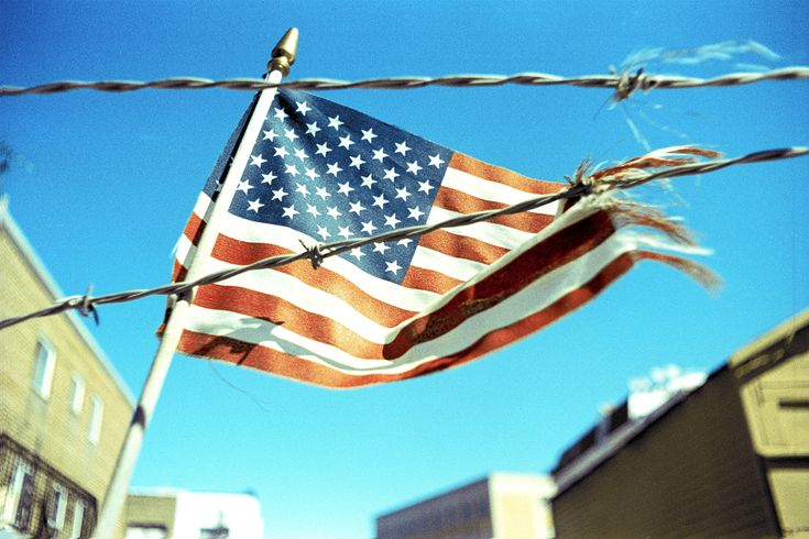 An American flag caught on barbed wire, photographed on Fuji Provia 100F and cross-processed.
