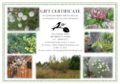 A beautiful gift that brings joy and benefit… -