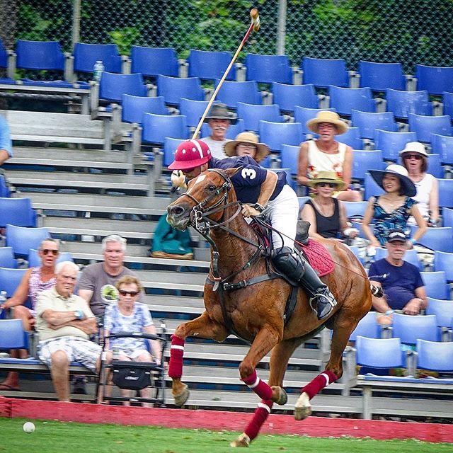 #bethpagepoloatthepark #polo #longisland #archballetbenefit #meadowbrookpolo #horseandrider #poloday #sunday