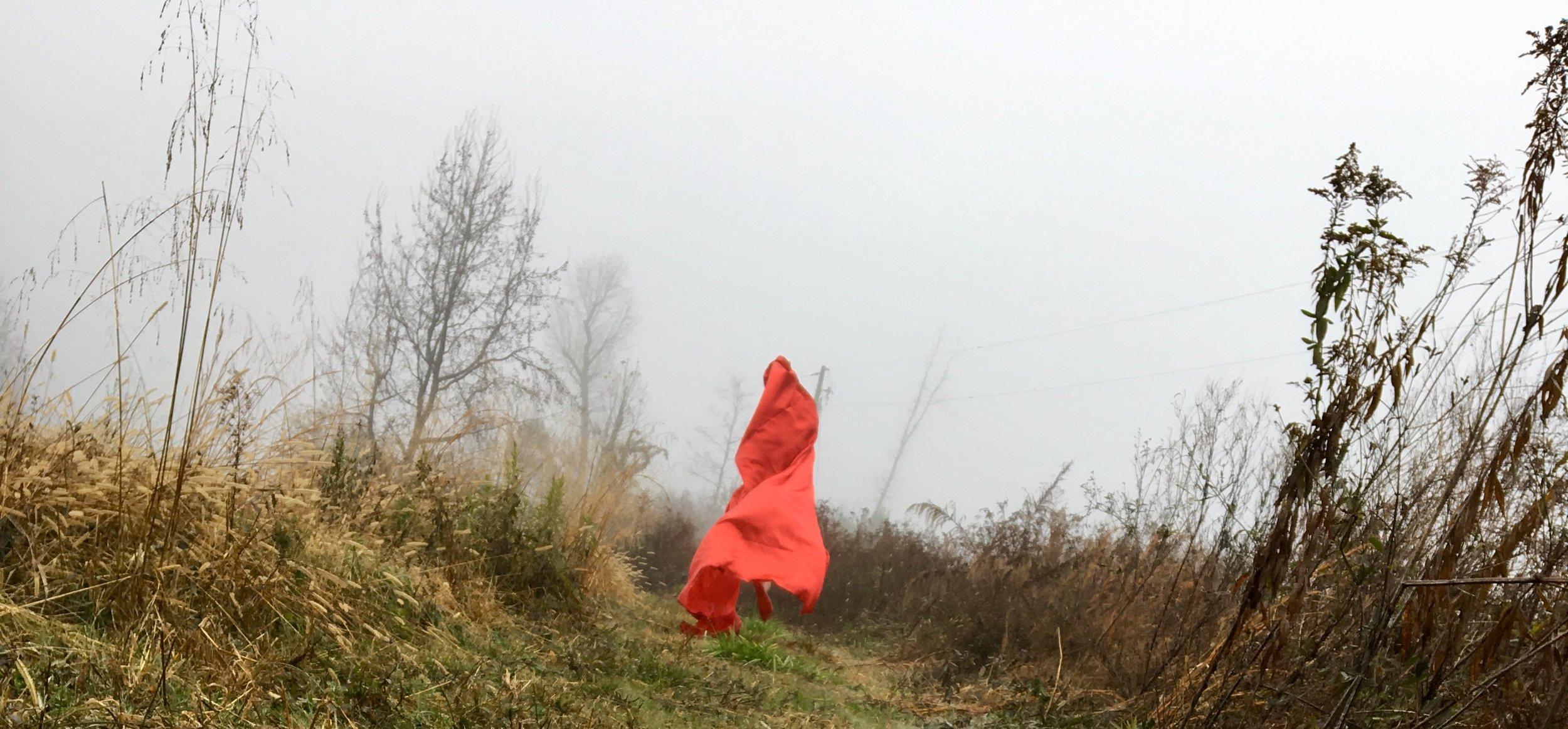 Cutting Through the Fog Like a Knife, Blountsville, AL, 2017