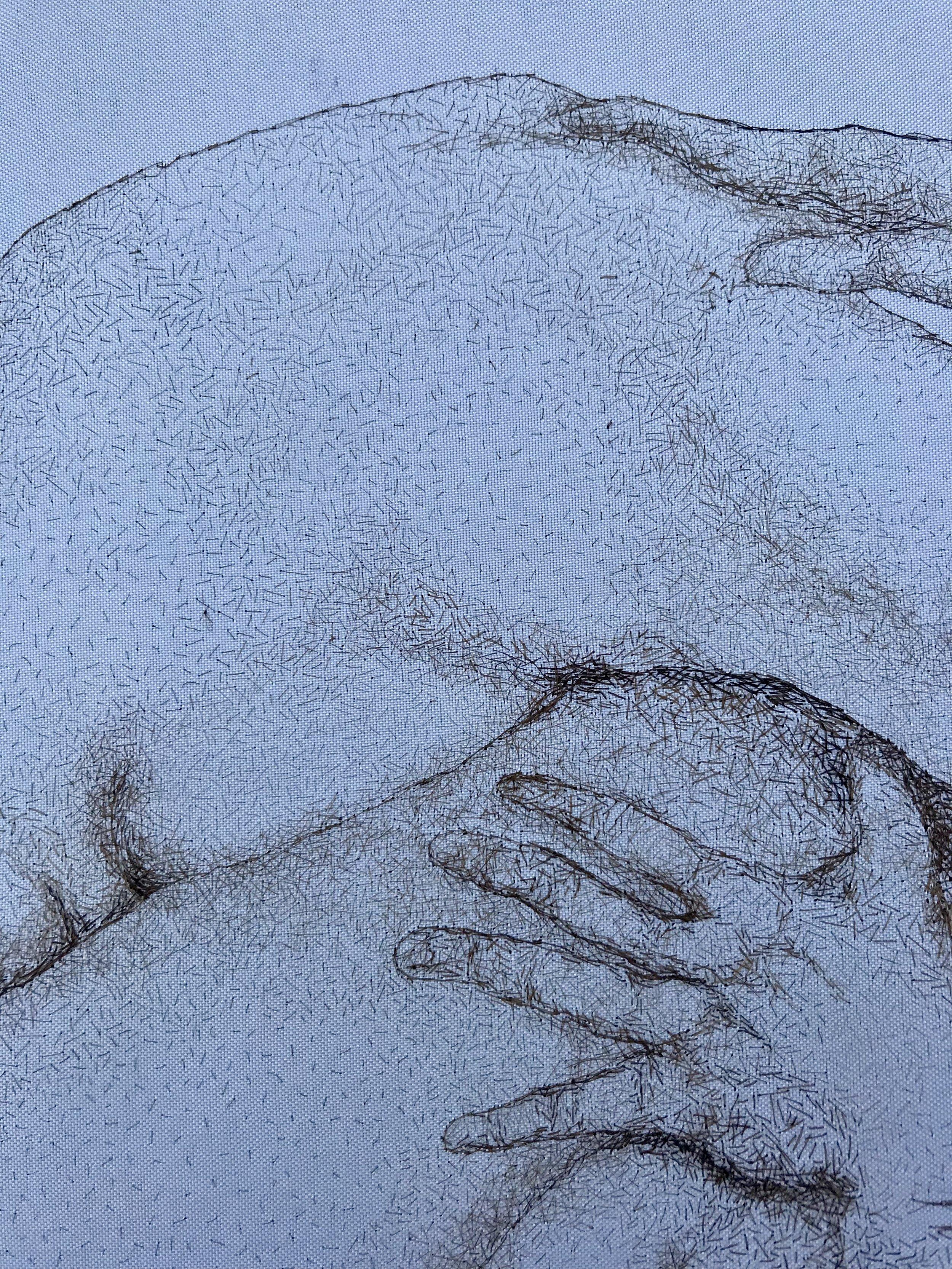 Hirsute Detail 2.JPG