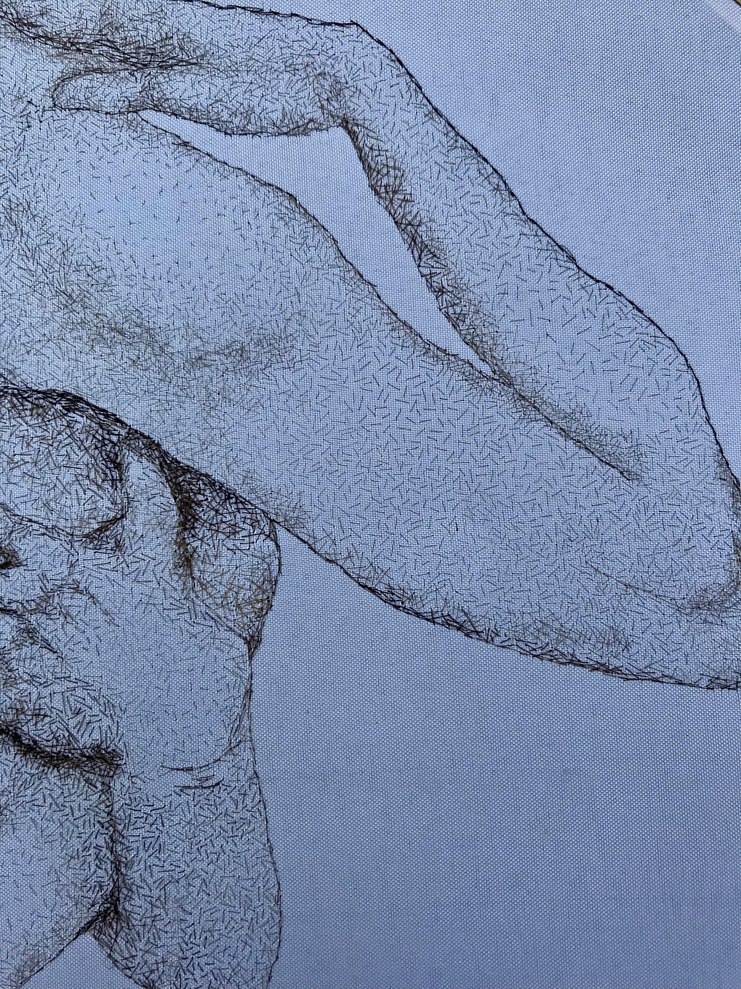 Hirsute Detail 4.JPG