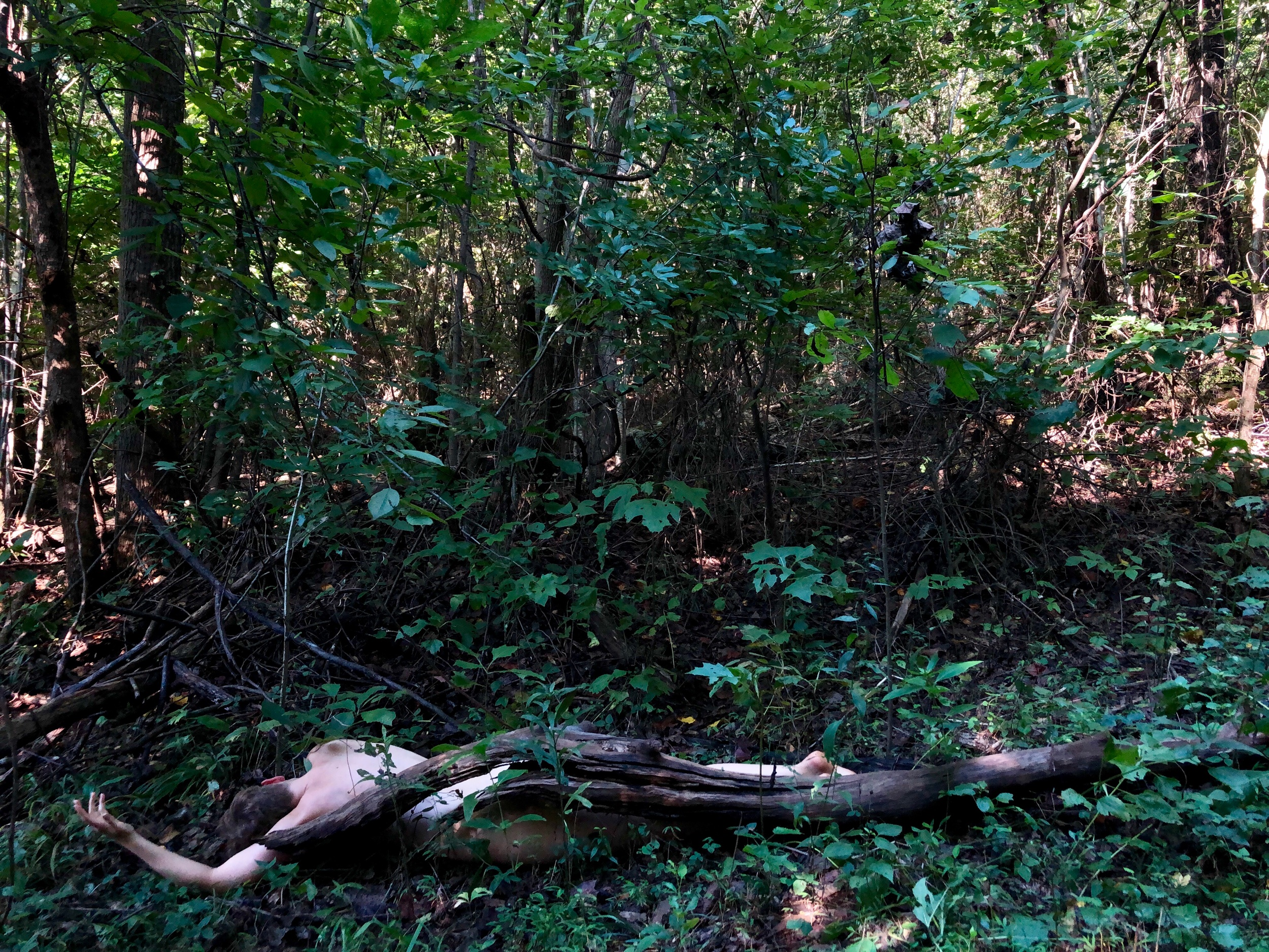 Bodies in the Landscape, August 2019