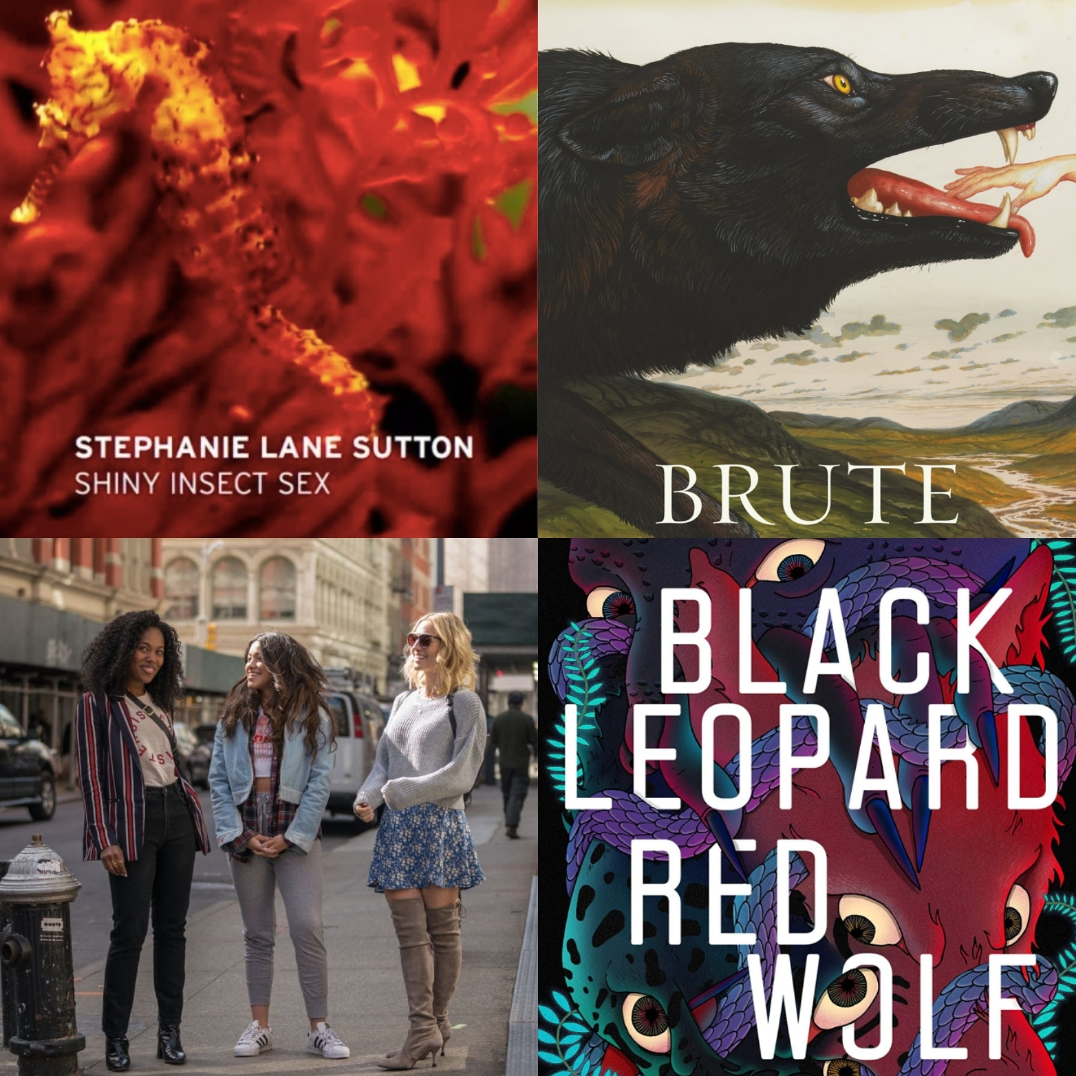 Shiny Insect Sex  by Stephanie Lane Sutton;  Brute  by Emily Skaja;  Someone Great  (2019);  Black Leopard, Red Wolf  by Marlon James