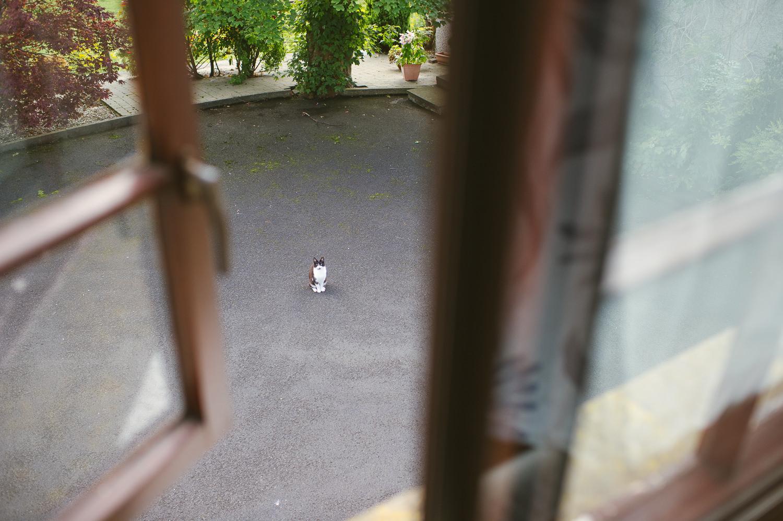Alternative-Wedding-Photographer-Belfast-019.JPG