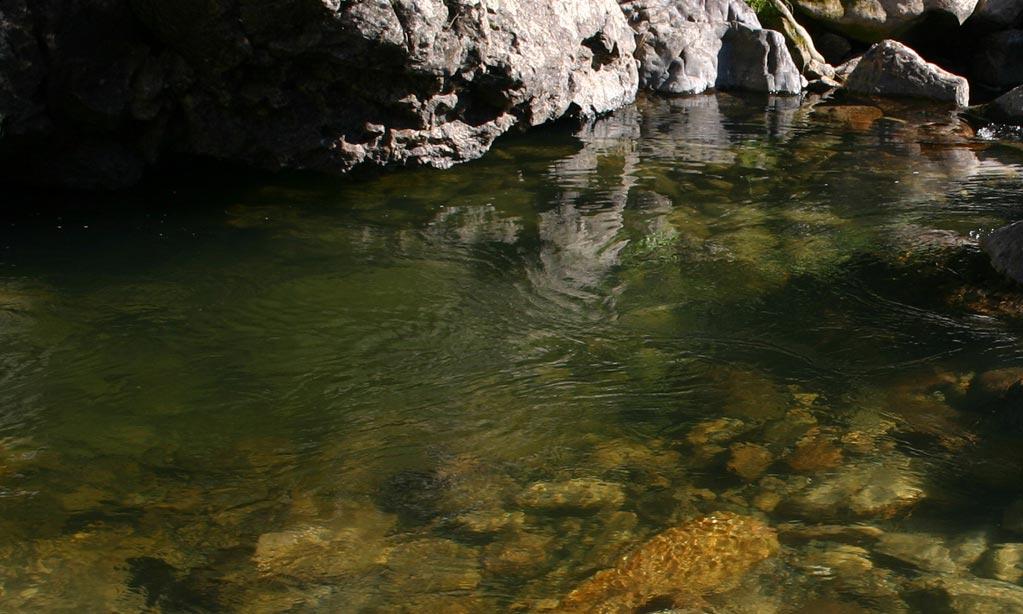 river-03.jpg