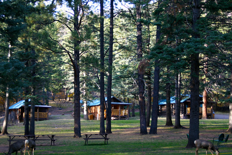 Groups - We offer special rates for groups to book Corkins Lodge for reunions, retreats, weddings, and anniversary celebrations. Our 11 cabins can sleep up to 60 people and our spacious grounds are perfect for group gatherings. Contact Philo for special rates at 575-588-7261