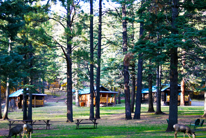 Corkins-Lodge-Web-Sm-Picnic-Grounds.jpg