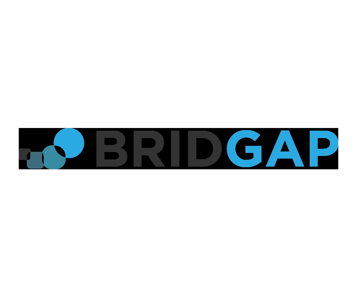 BridGap Logo.jpg