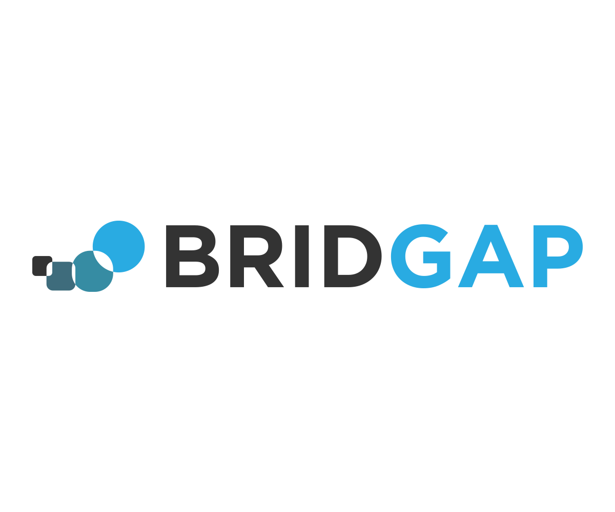 BridGapLogoTransparent.png