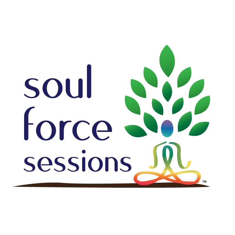 Sign up for my Soul Force Sessions Email Newsletter Above!