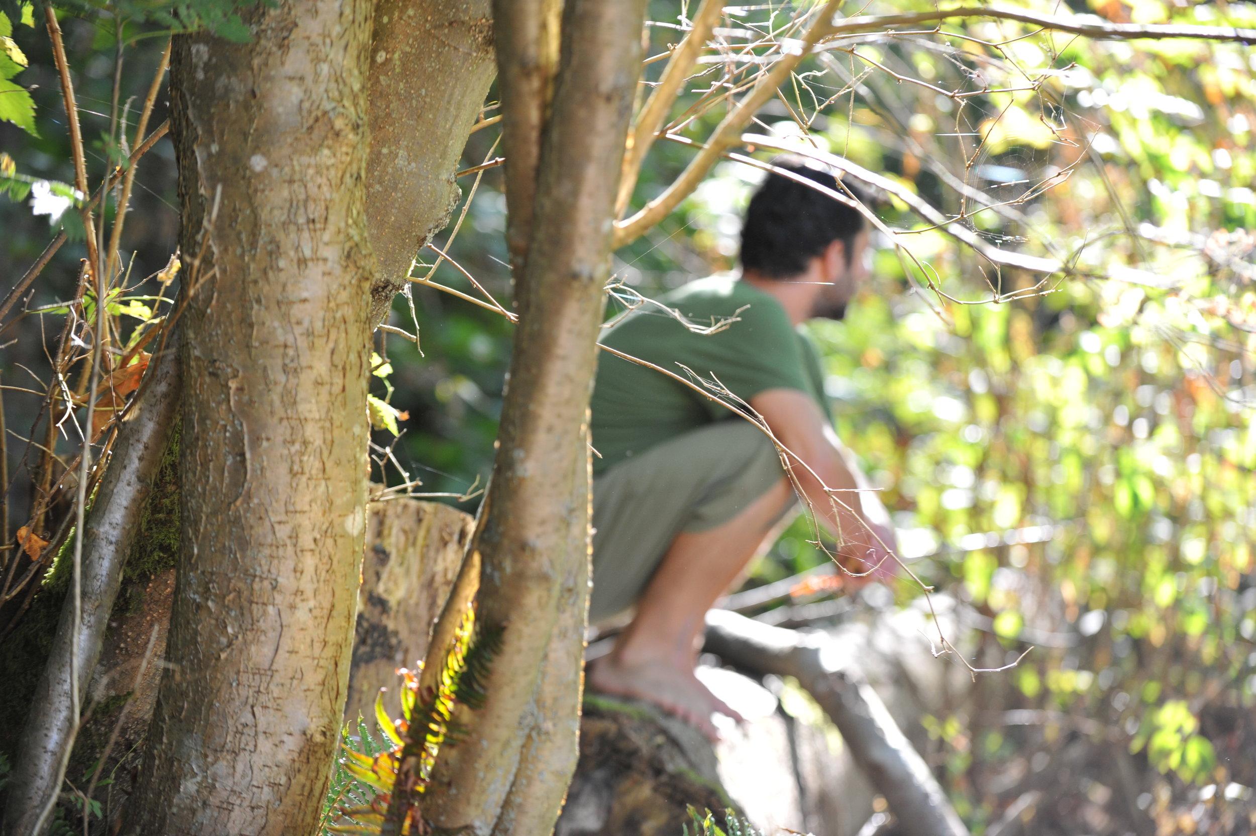 man-squat-tree-outdoors.JPG