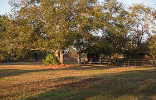 Shadow-Oak-Plantation-Lodge-cookhouse.jpg