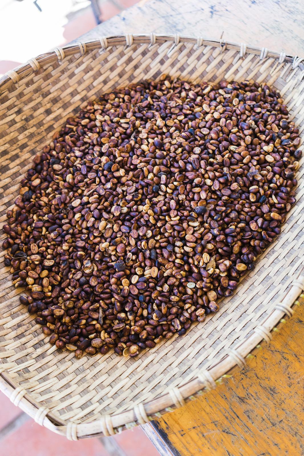 K'Ho Coffee beans