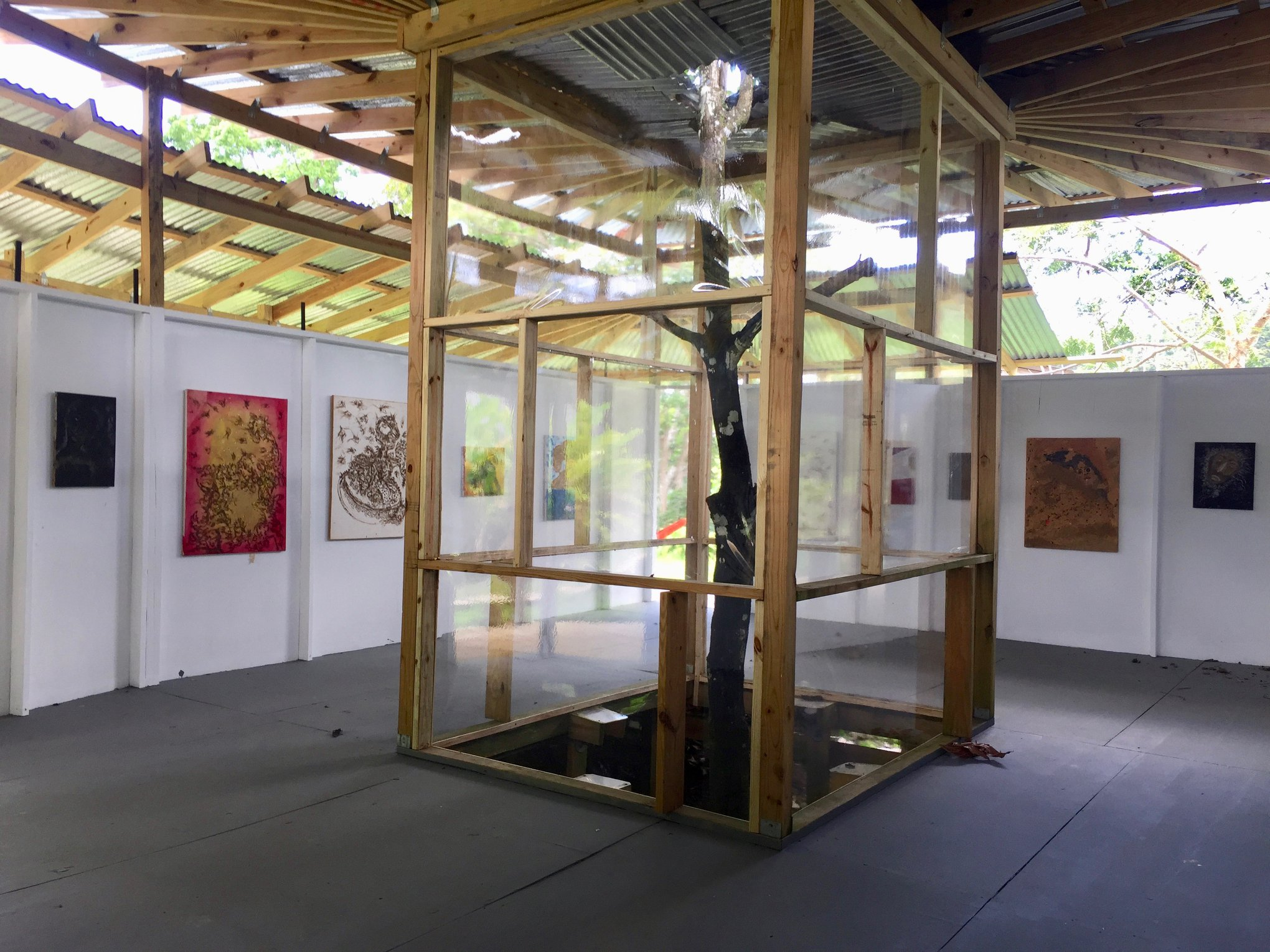 Papo Colo_Pangea Art Republic_Artist Studio in the Rainforest_Pana House_Captive Tree.jpg