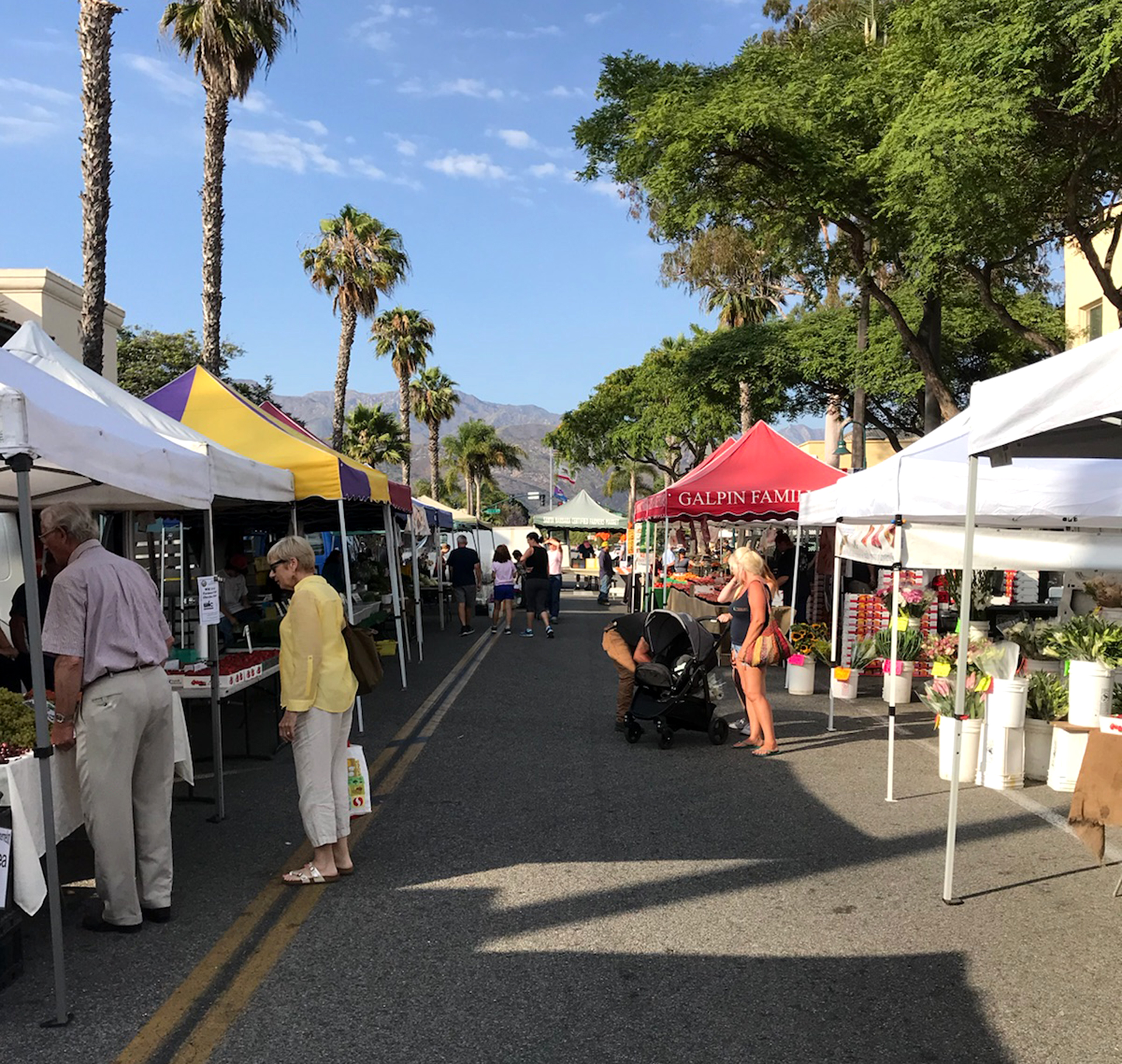 Caprinteria Certified Farmer's Market, Linden Street, Carpinteria California.