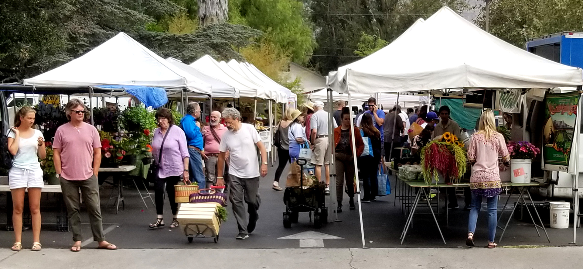 The Ojai Certified Farmer's Market located at 300 East Matilija Street, Ojai.