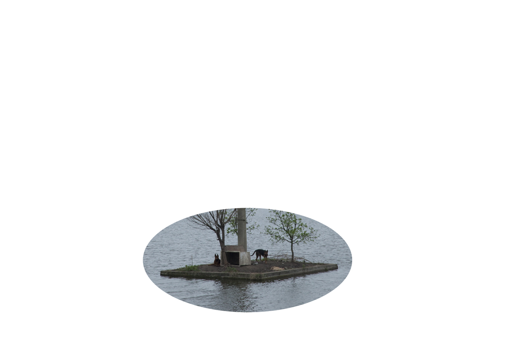 18_001.jpg