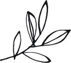 McKimm_Leaf.jpg