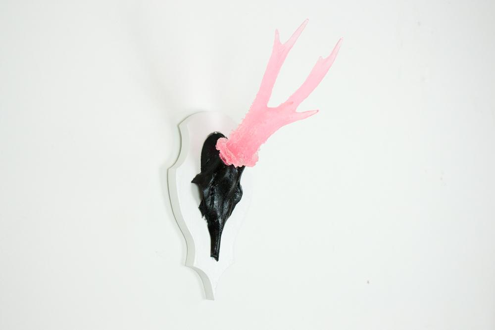 antlers-9394.jpg