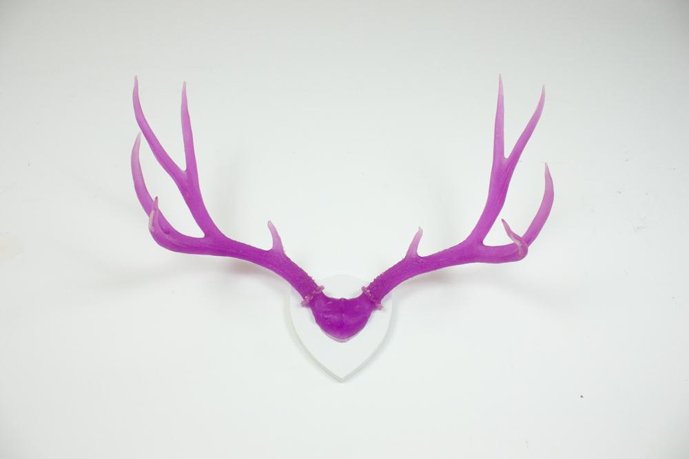 antlers-9325.jpg
