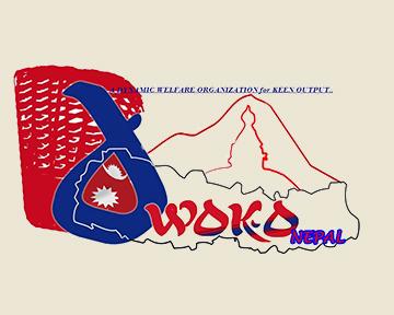 dwoko logo.jpg