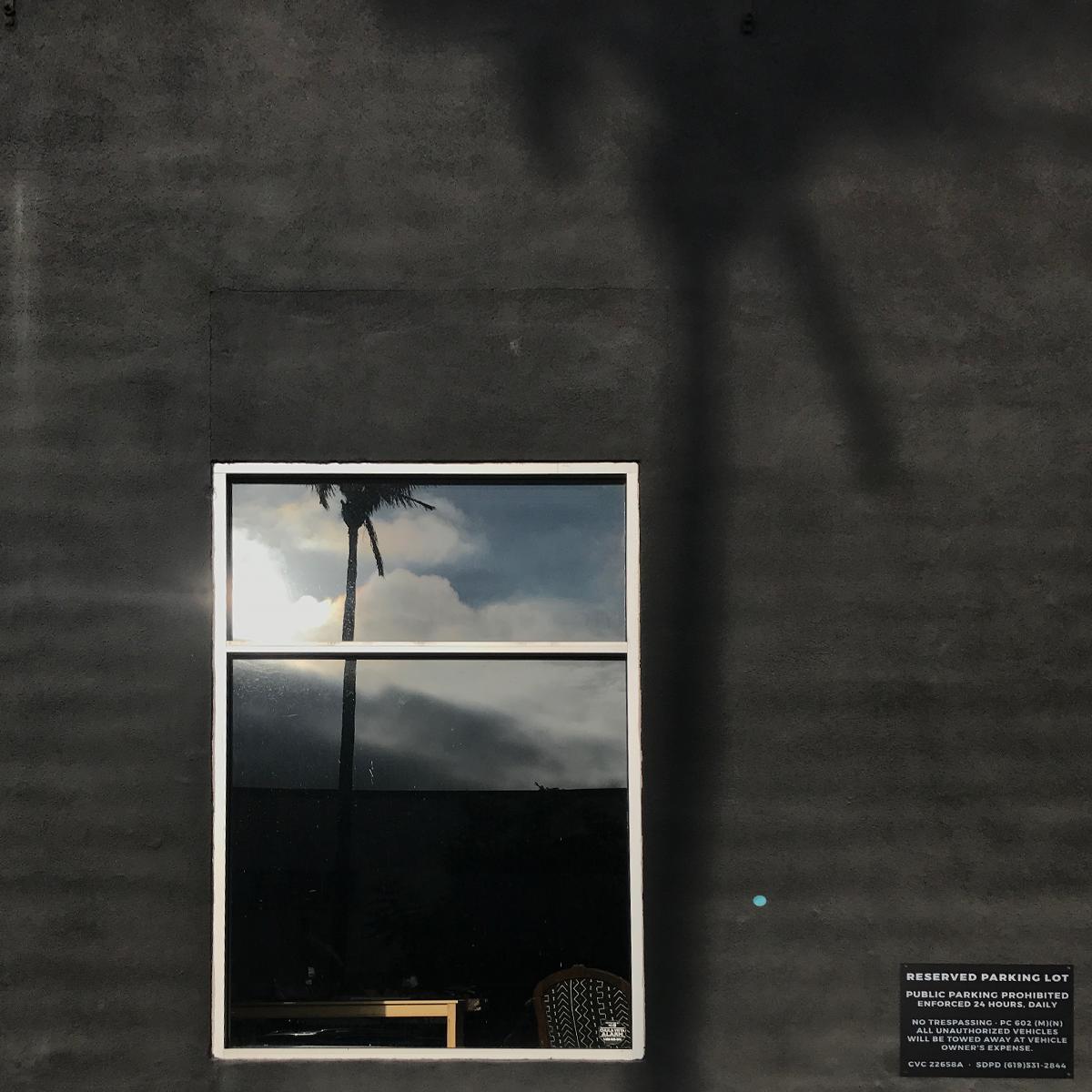 Window+Palm_blank.png