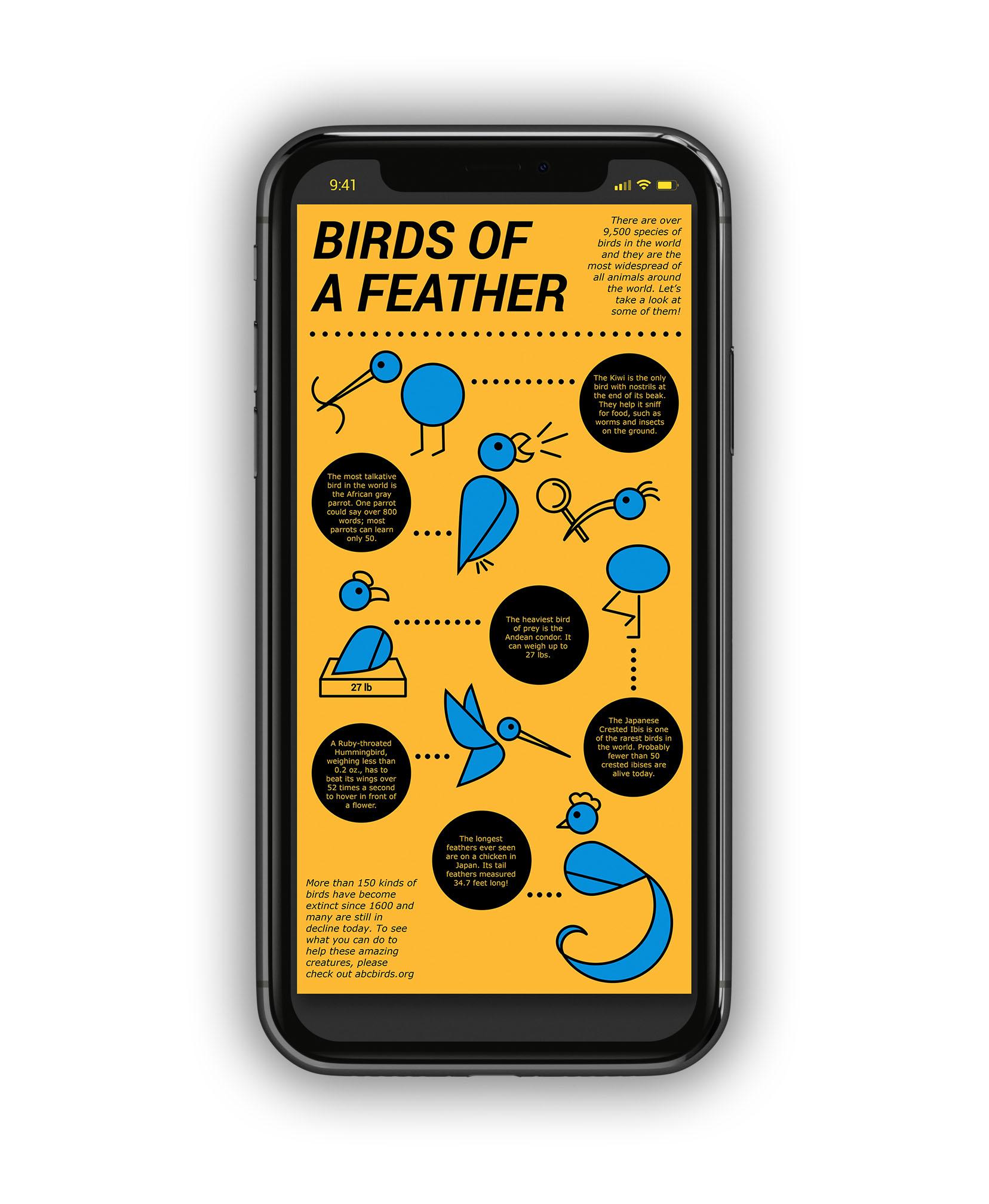 BirdInfographic_MU4.jpg