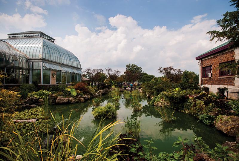 anna-scripps-conservatory2.jpg