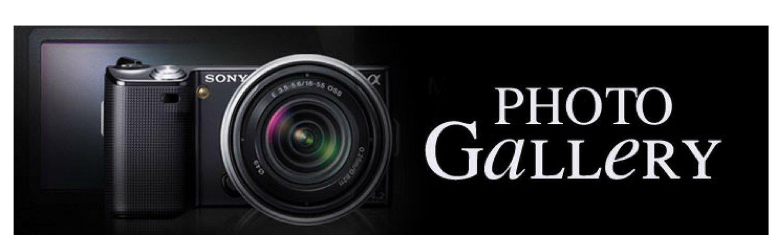 Photo_Gallery_e885a2162c7e6ef522e9e0927f2cff5e.jpg