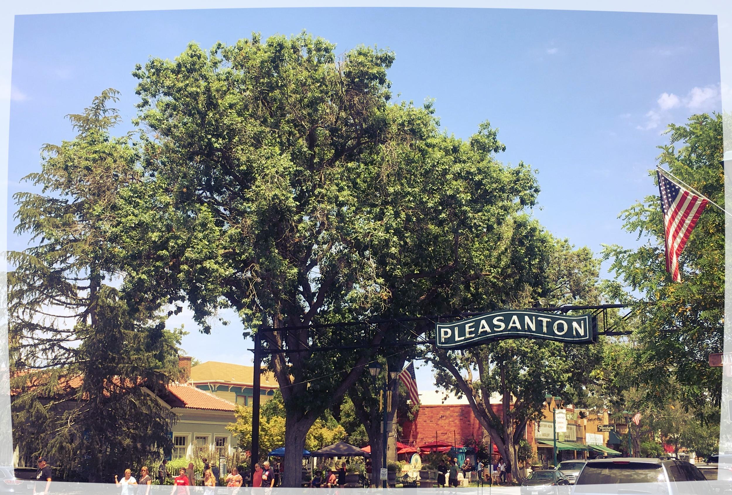 pleasanton-california.JPG