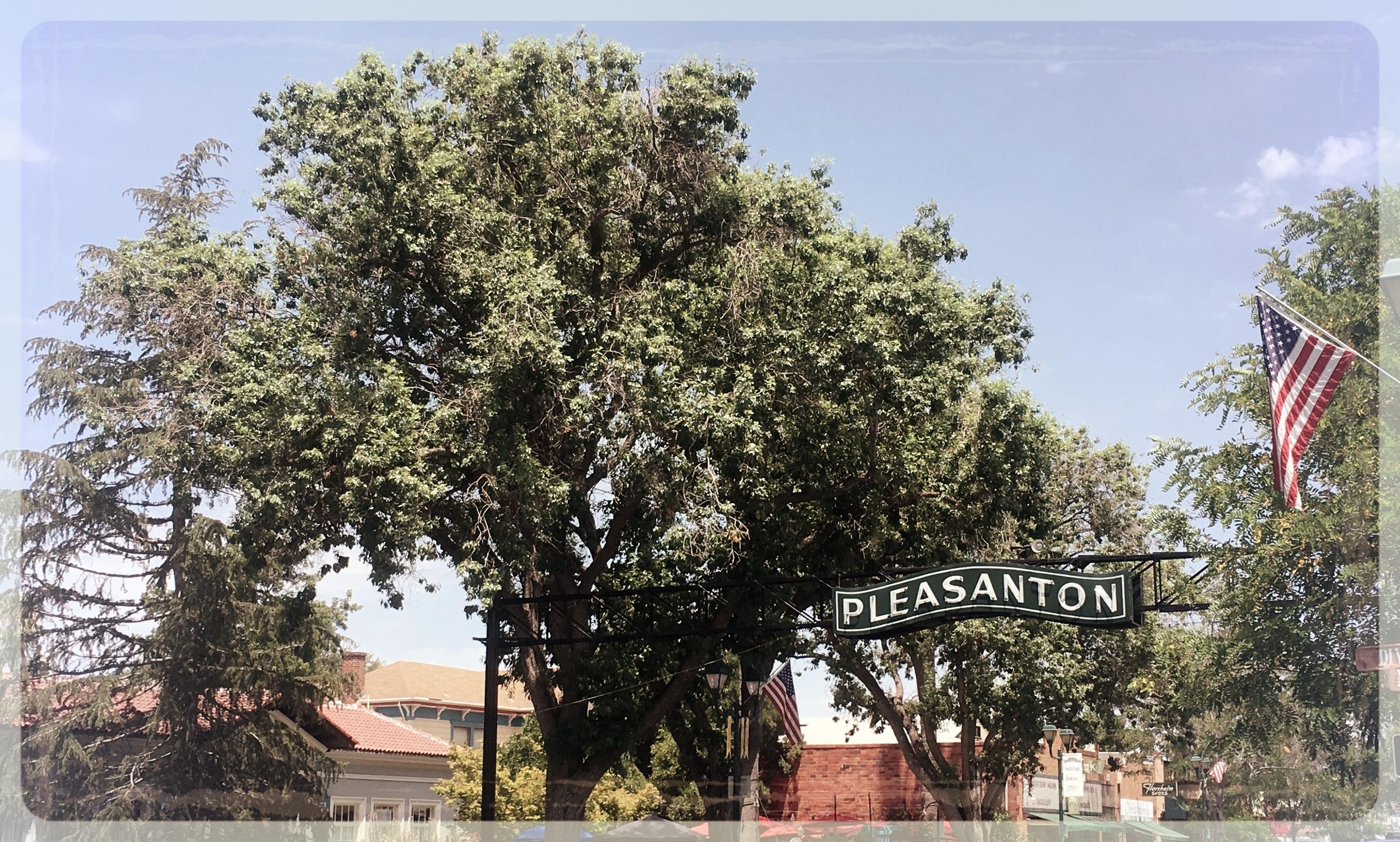pleasanton-san-francisco.JPG
