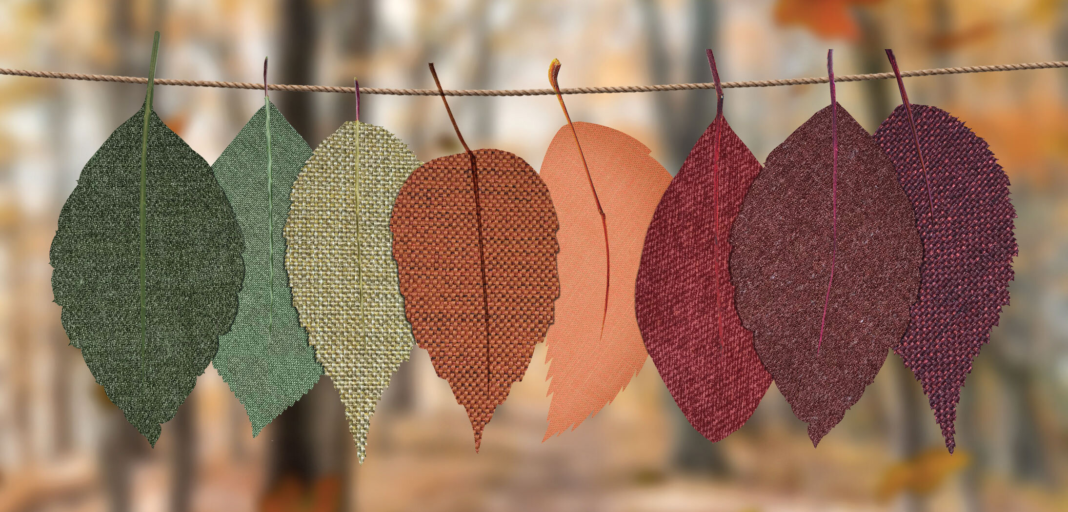 autumn-decoration-autumn-mood-forest-bright-1389460.jpg