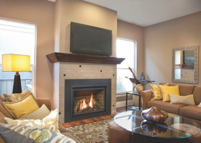 Chaska 34 Gas Fireplace Insert - Chaska gas insert fireplace available with multiple media sets.