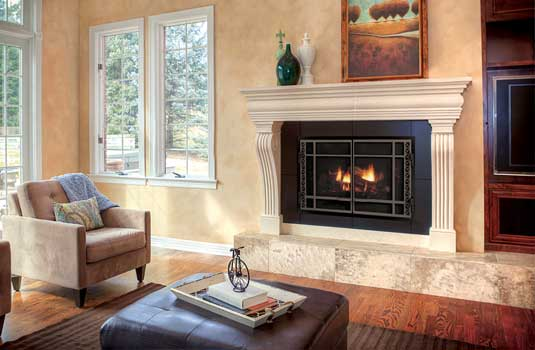 D Series Gas Fireplace Insert - Two sizes fit virtually every fireplace