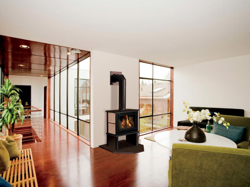 Birchwood-Contemporary-base-livngrm-800x600[1].jpg