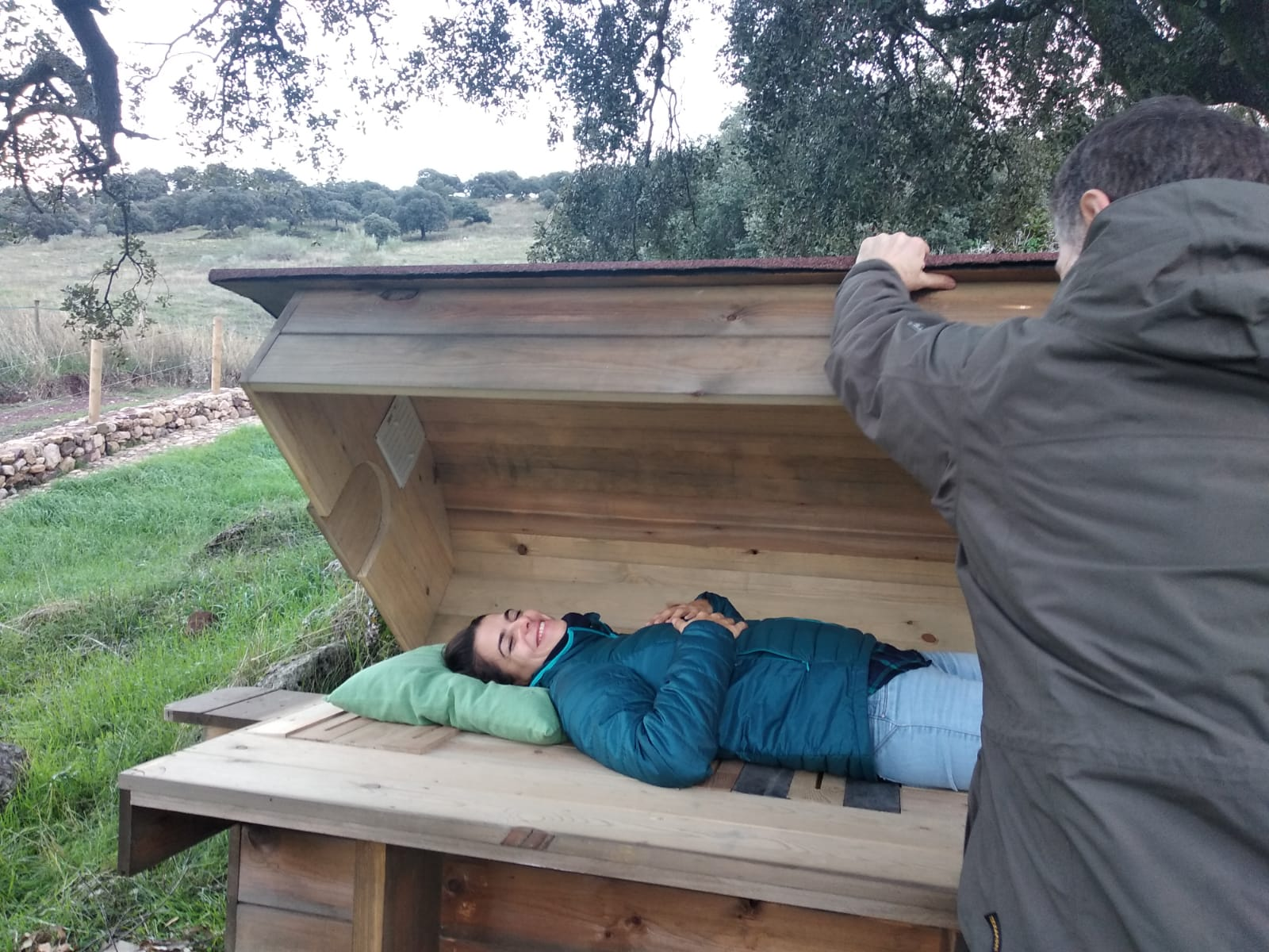 Bee sauna in action